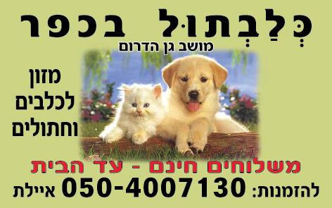 מגנט כלב וחתול מזון לכלבים וחתולים